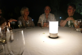 The uninvited dinner guests on the table--attracted by the light