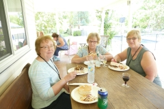 Joyce the 2nd, Anita, and Marilyn enjoying the barbecue
