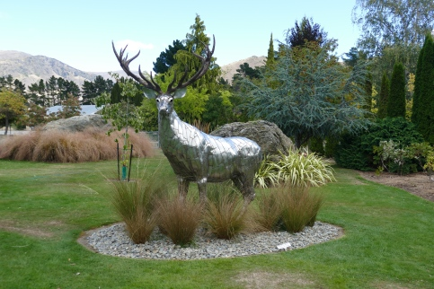 A stag in the Garden at Jones Orchard Fruit Stand in Cromwell