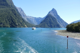 Mitre Peak in background-Milford Sound